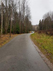Grodstängsel i Gökdalen